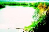 وضعیت تالاب «استیل» عباسآباد آستارا مطلوب نیست