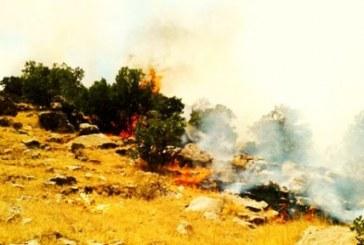 آتشسوزی گسترده در مناطق کوهستانی شاهو در پی مانور نظامی سپاه پاسداران