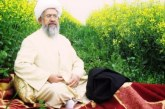 محکومیت محمدرضا نکونام به پنج سال زندان و شلاق