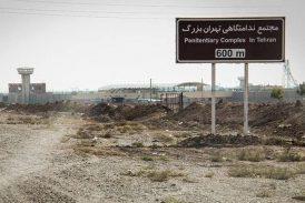 شاهین ناصری، شاهد شکنجه نوید افکاری، در انفرادی زندان تهران بزرگ جان باخت